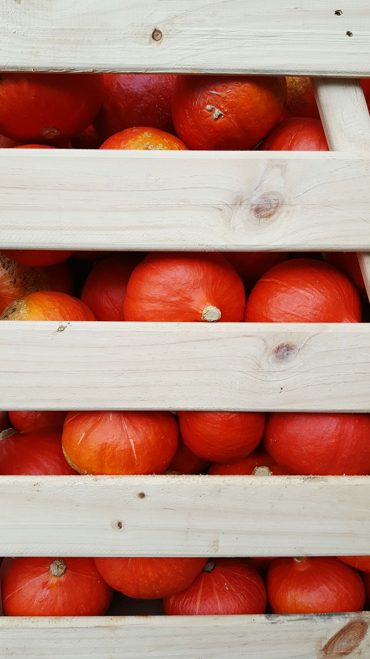 Crate filled with pumpkins No People Red Pumpkin Stack Pile Pumpkins Crate Large Group Of Objects Close Up Wood Fruit Health Healthy Food Healthy Eating Full Frame Backgrounds Stack Repetition Day Large Group Of Objects Red No People Exploring Style