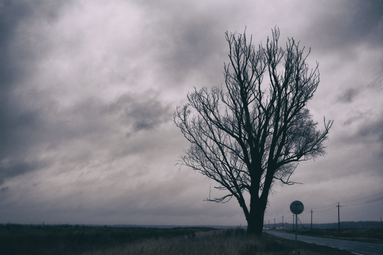 Alone Belarus Clouds Cloudy EyeEm Best Shots EyeEm Nature Lover Landscape Light Mazyr Nature Power Lines Road Sky Sky And Clouds Skyline Tree