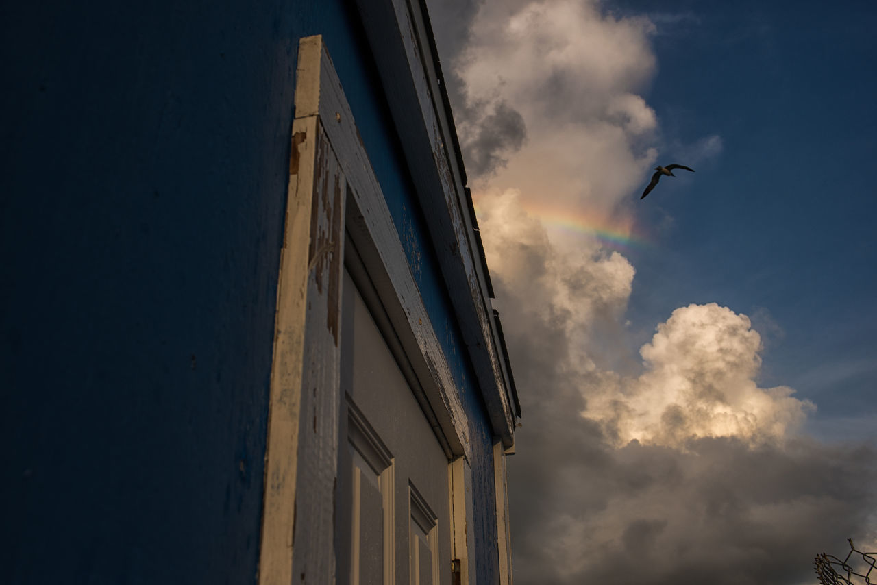 Dream Animal Themes Animals In The Wild Architecture Bimini Bird Building Exterior Built Structure Cloud - Sky Day Flying Lookingup Low Angle View Mid-air Nature No People One Animal Outdoors Photographyisthemuse Rainbow Scenics Sky Spread Wings Sunset White Clouds