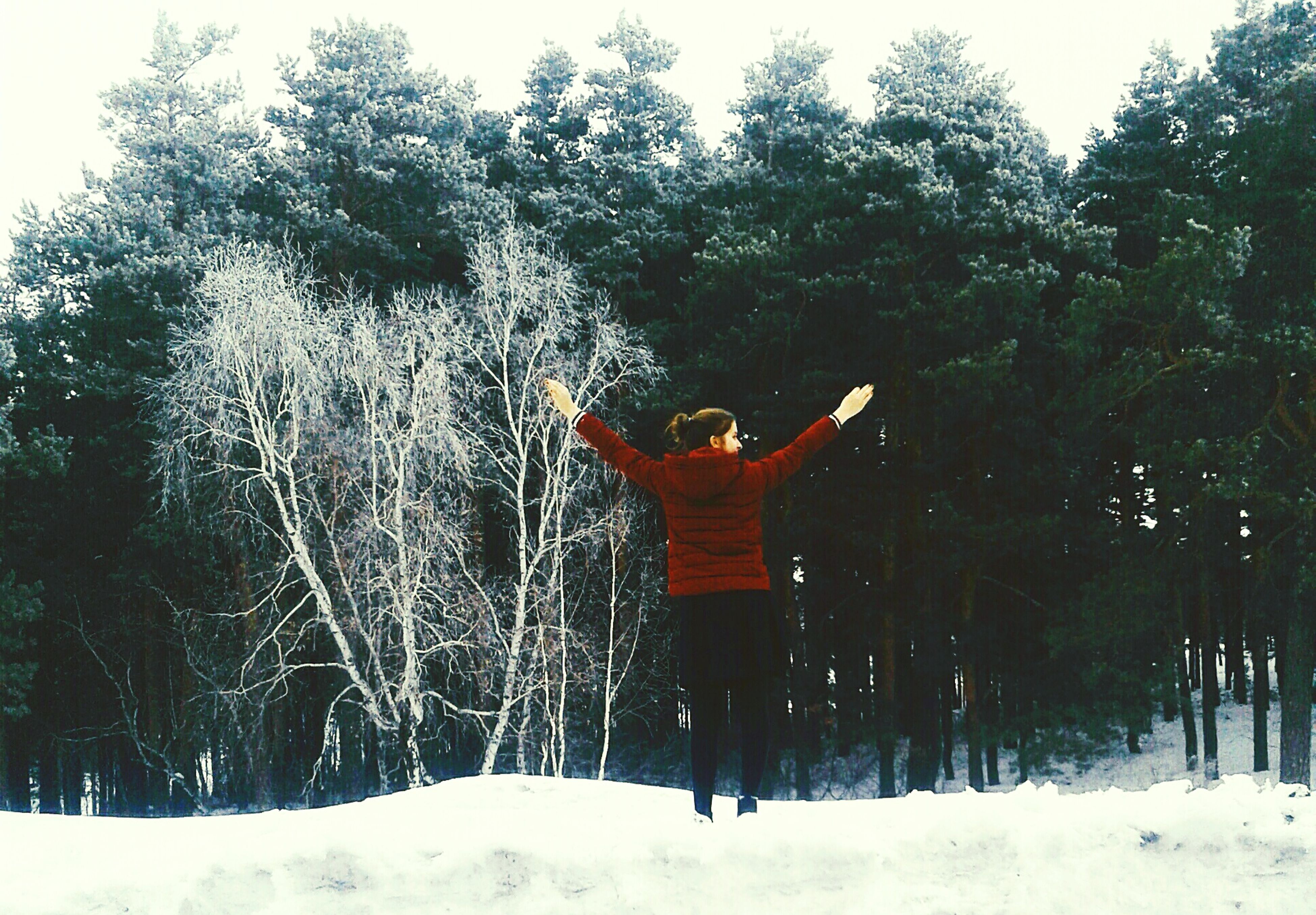 winter, tree, rear view, one person, cold temperature, leisure activity, real people, standing, snow, weather, nature, lifestyles, outdoors, arms raised, day, beauty in nature, sky, men, people, human body part, adult