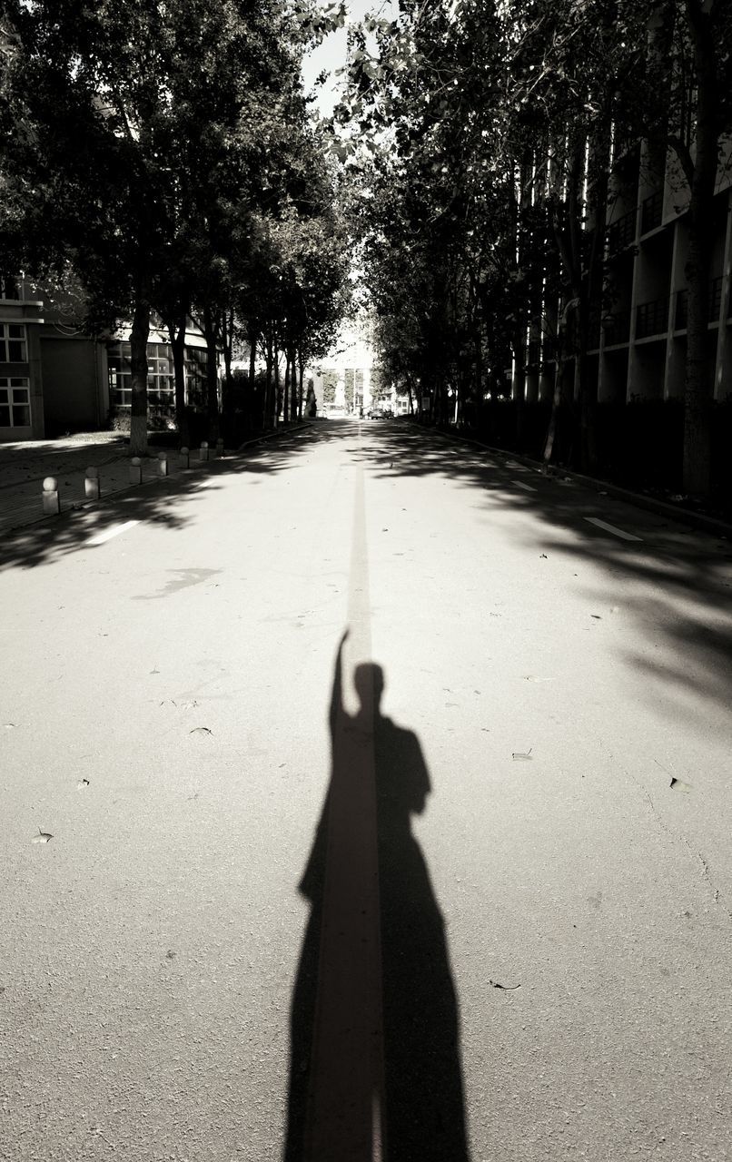 shadow, sunlight, tree, real people, outdoors, one person, day, nature, people