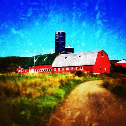 Vermont Farm. #miltonvt #vt Vt_scenery Vermont_scenery Silo 802 Barn Miltonvt Farm Igharjit Countryside Vermontbyvermonters Iphoneonly Vt_scene Photooftheday Vermont_scene Picoftheday Cowbarn Vermont Igvermont Instamood Igvt Bestoftheday Vt_landscape Instagood Instagramjit Webstagram Vt_farm EyeCandy  Redbarn Vt