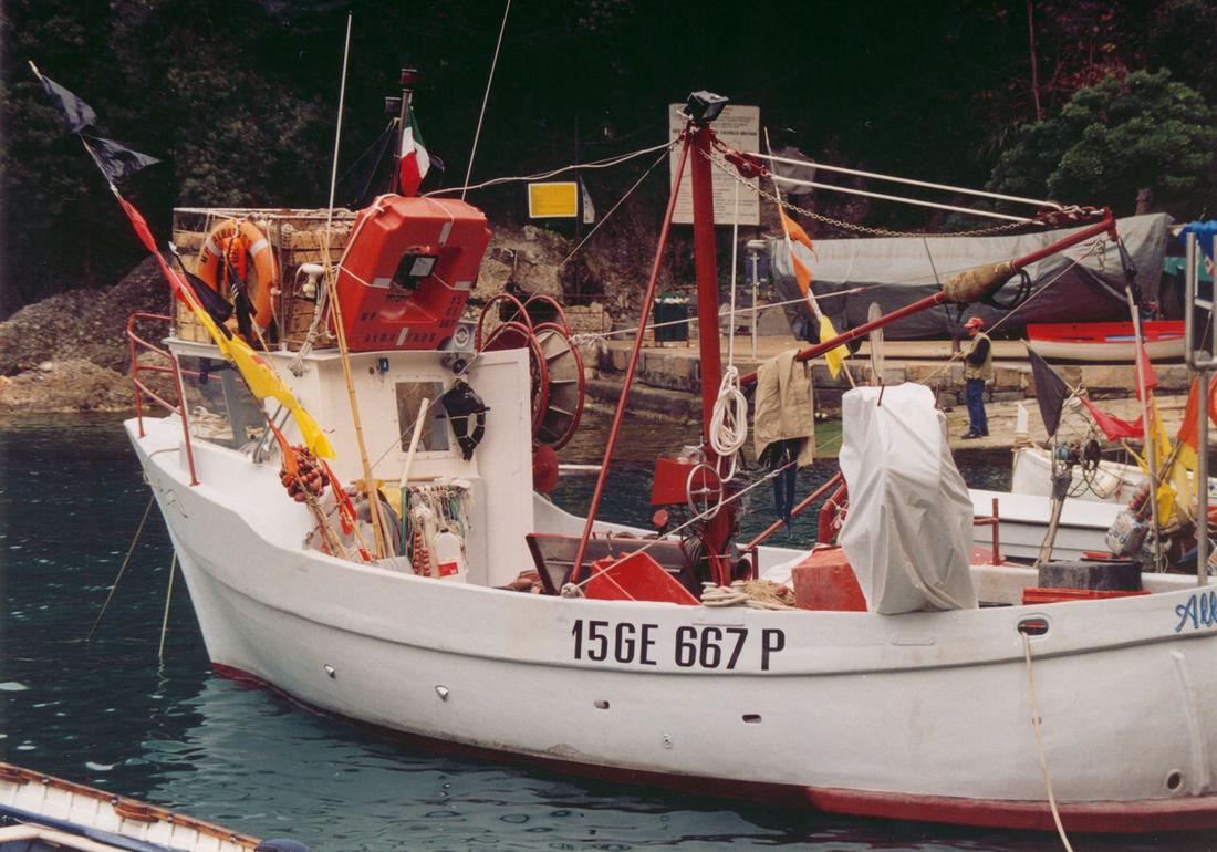 Barca da pesca, una delle ultime EyeEm Gallery Harbor Harbour Portofino Italy Reflection Barca Da Pesca Boat Color Film Day Film Photography Fishing Charter Mode Of Transport Moored Nature Nautical Vessel Outdoors Sailing Sea Transportation Water 35mm 35mm Film