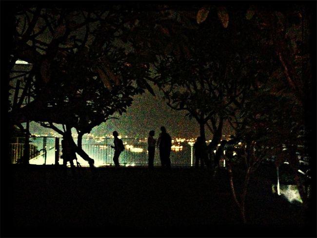 Night. Mbs Singapore Skypark Gardenbythebay City