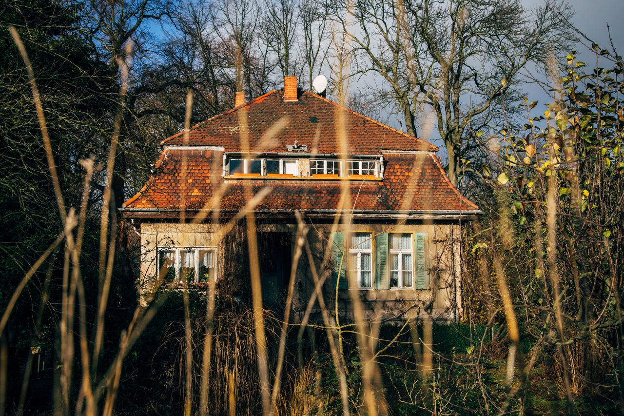 old house on the East German countryside Architecture Autumn Building Exterior Built Structure Day Fall House Nature No People Old Old Buildings Outdoors Solitude Tree Water Weathered