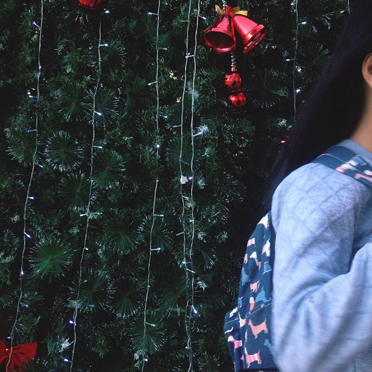 Say ' Hi Dec ' ✌🏼️ Winteriscoming Christmas Tree Christmasiscomingsoon