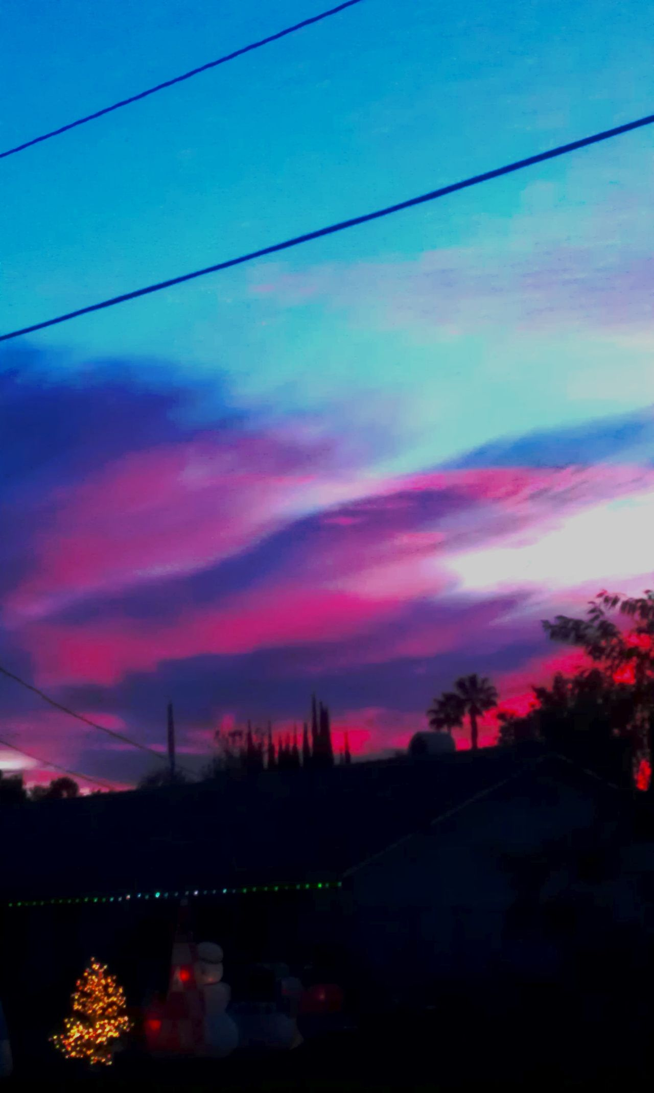 Taking Photos Colour Of Life No People, Riverside California Beautiful Day Color Photography Home Is Where The Art Is Outdoors Blue Sky Blue Color Red Sky Pink Sky Purple Sky Sky Sky And Clouds Clouds Xmas Lights  Trees Sunset Color Palette Ice Age
