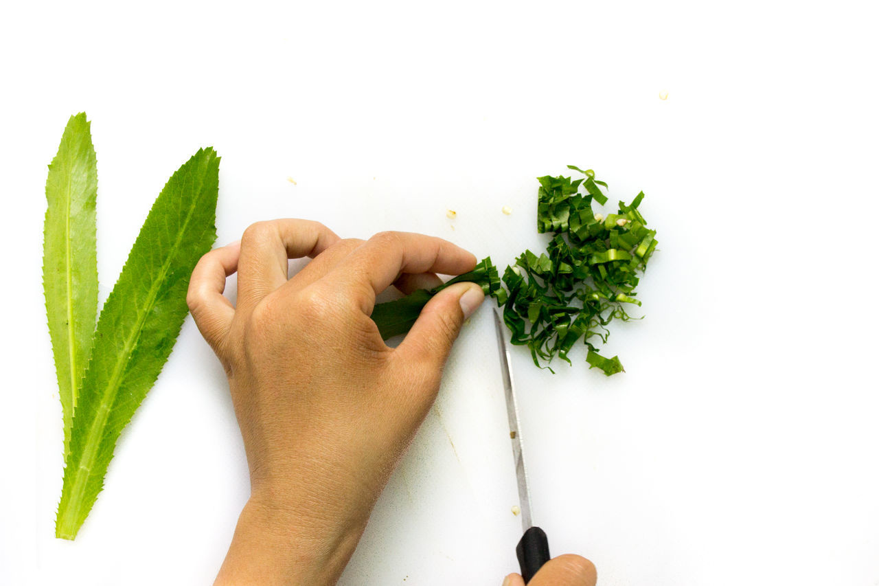 Cropped Hand Slicing Vegetable On White Background