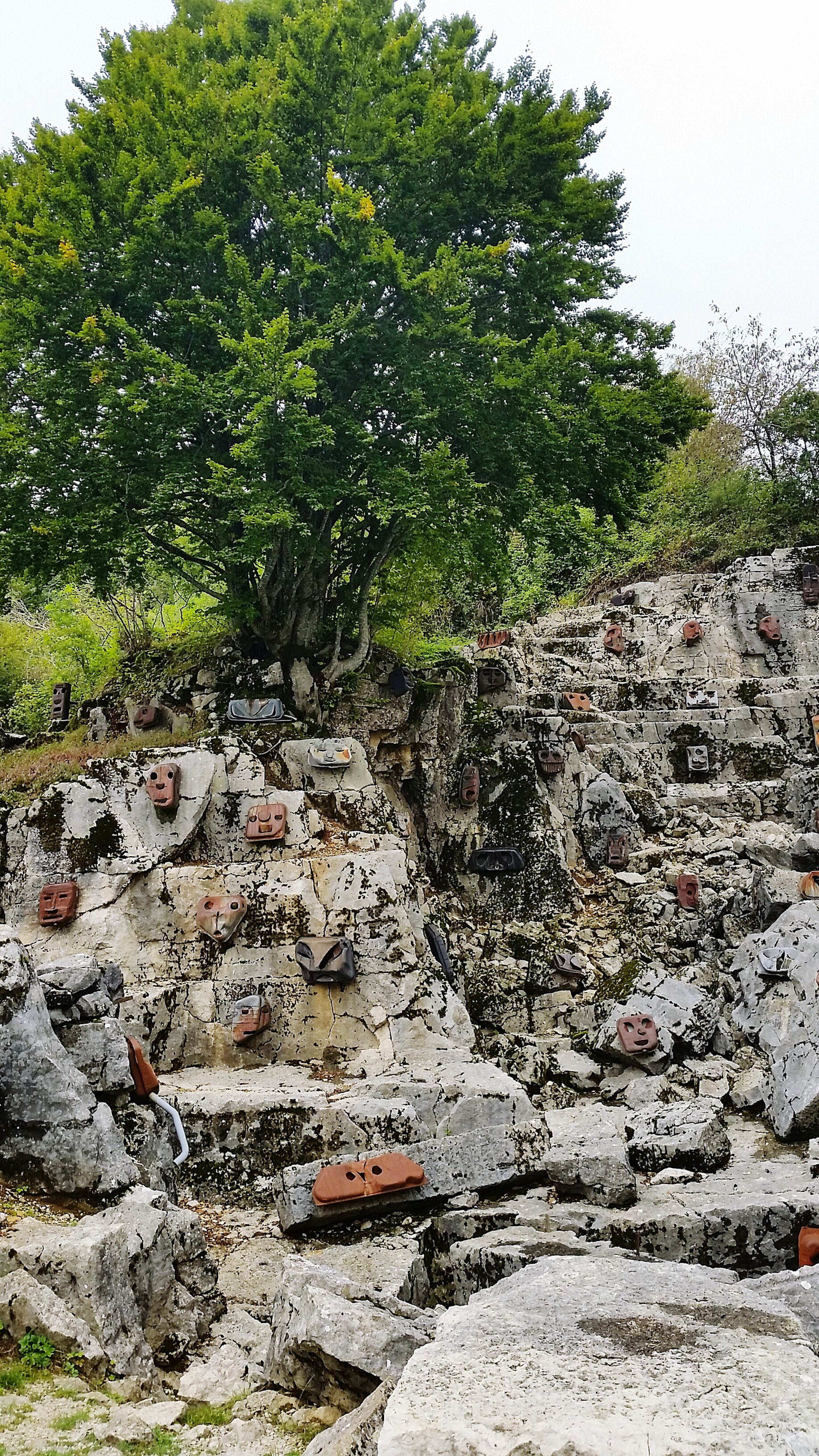 tree, water, rock - object, clear sky, growth, nature, plant, tranquility, day, tranquil scene, transportation, stone - object, green color, beauty in nature, outdoors, abandoned, no people, sky, scenics, river