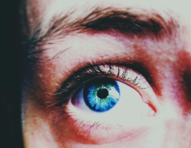 Ojo Ojo Azul Mi Hermano Mi Hermanito Hermoso Eye Human Eye Human Body Part Eyemphotography Photooftheday First Eyeem Photo Eyelash One Person Real People Close-up Eyebrow Eyesight Eyeball Person Sensory Perception Human Skin Iris - Eye Portrait Vision Adult Day People