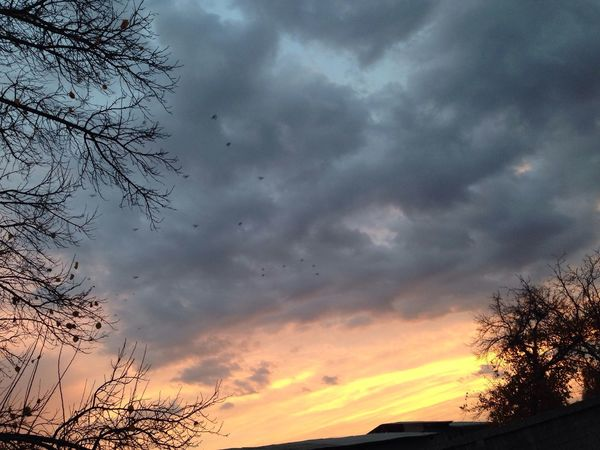 Nature Automne Sky Sad