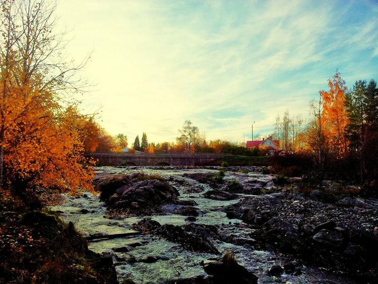 Stream Water Scenics Tranquil Scene Tree Tranquility Sky Flowing Nature Beauty In Nature Non-urban Scene Flowing Water Day River Cloud - Sky Remote Outdoors Cloud Solitude Calm