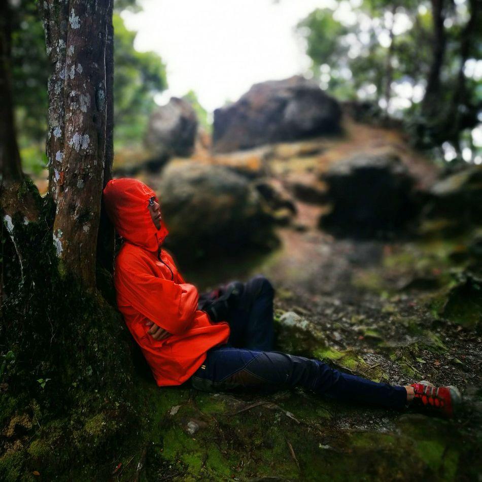 LoveNatureAndMountain Outdoors Hikingadventures True Love