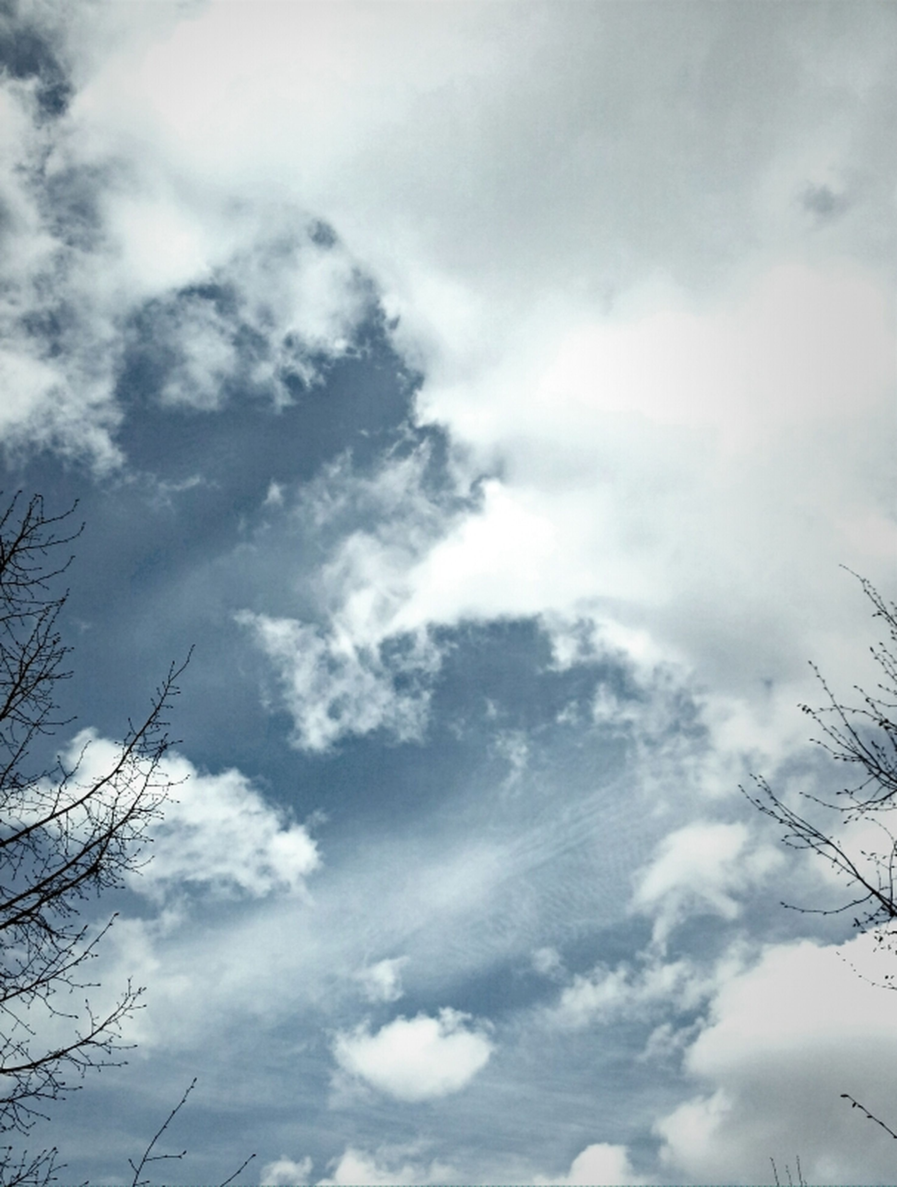 low angle view, sky, cloud - sky, cloudy, tranquility, beauty in nature, nature, scenics, cloud, tranquil scene, tree, cloudscape, outdoors, weather, day, high section, no people, branch, overcast, backgrounds