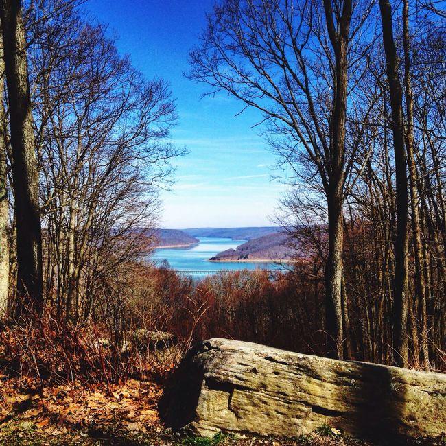 Showcase April Kinzua Allegheny National Forest Allegheny River