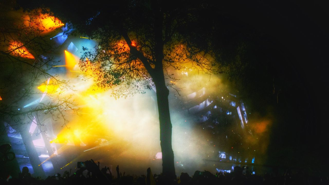 arts culture and entertainment, night, event, music, large group of people, nightlife, celebration, illuminated, real people, crowd, popular music concert, performance, tree, outdoors, nature