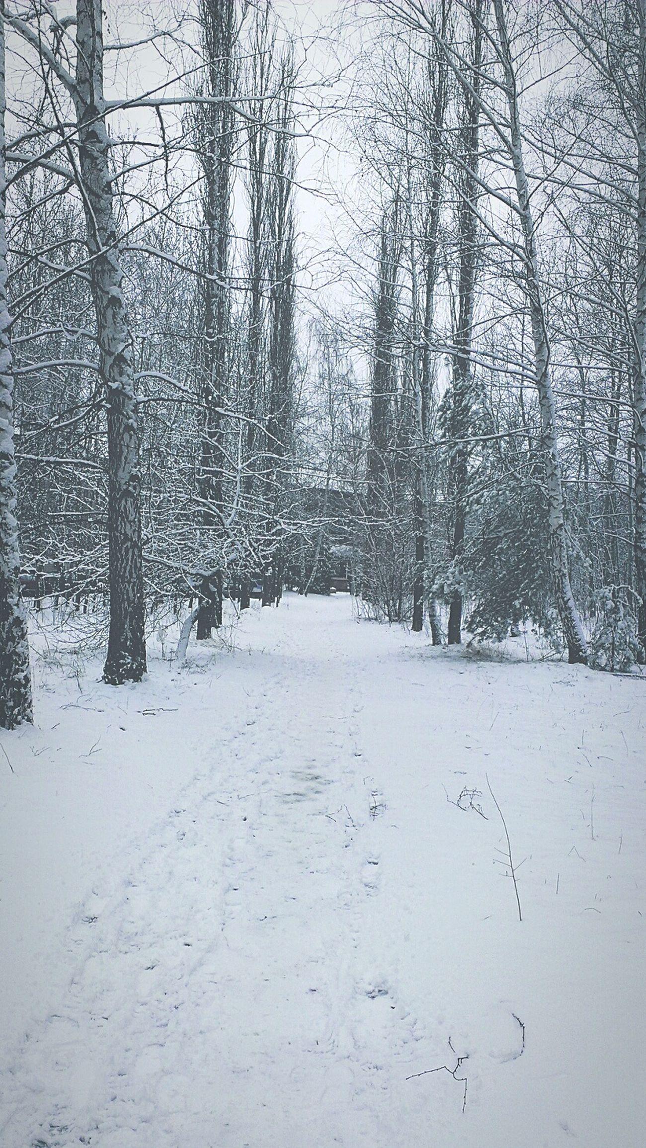 зима. .вспоминаю звук хрустящего снега .. ладошками ловлю я снежинки .. вдыхая холодный воздух .. хочу поскорее забыться.. чтобы мысли улетели подальше.. чтобы душа стала чистой, как снег.. чтобы спокойно мне было так же, как спокойно летит белый снег..