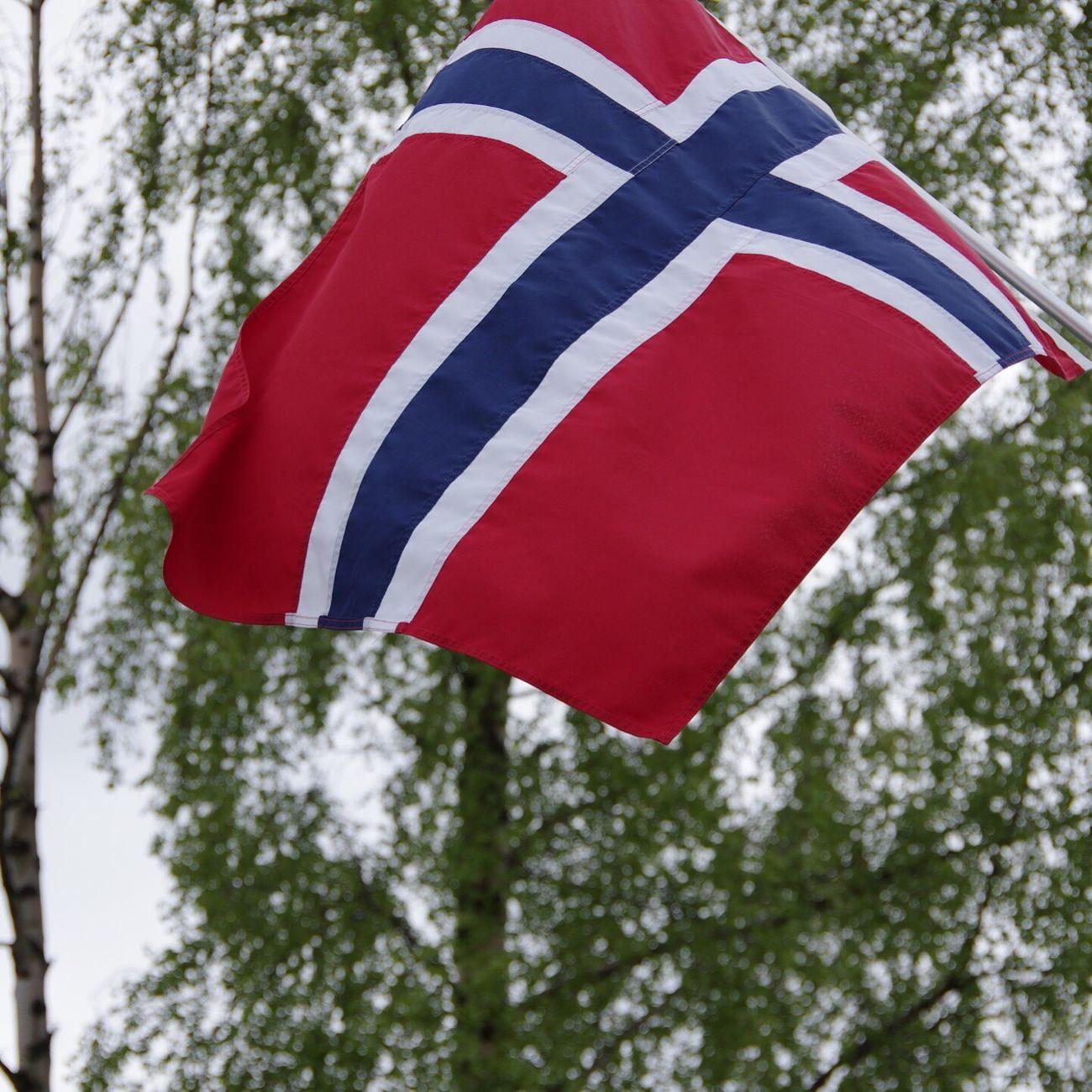 Flag Norway Norwegen Trees Visitnorway Taking Photos Rødthvittogblå