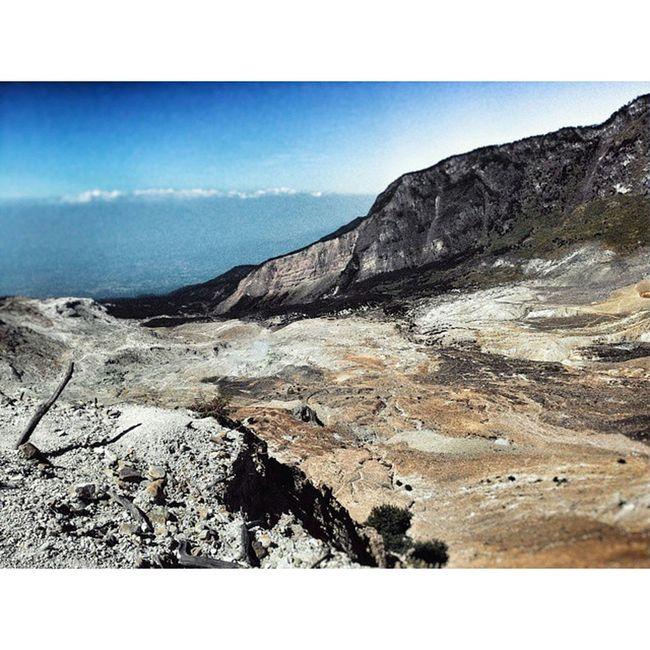 Gear : zenfone5 Editused : snapseed&pictart Asusphotography Zenfonefv Mtpapandayan Photoshoot Iseng