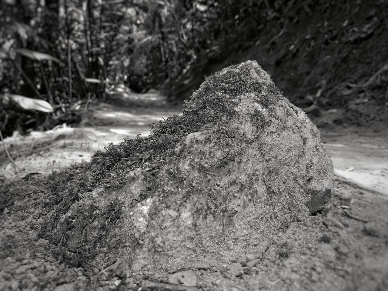 rock - object, nature, outdoors, day, no people, close-up
