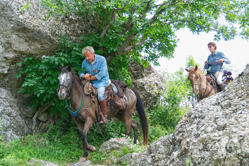 Horse trekking on the Groppo Rosso - Val d'Aveto Natural Park - Santo Stefano d'Aveto - Liguria - Italy Adult Animal Grass Groppo Rosso Horse Horseback Riding Lifestyles Livestock Mammal Men Nature Outdoors Pathway People Real People Riding Rock Rural Scene Santo Stefano D'aveto Senior Adult Senior Men Sitting Tree Trekking Two People