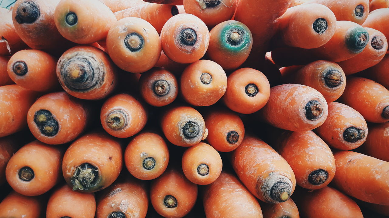 Zanahorias Zanahorias Orange Color Vegetable Orange