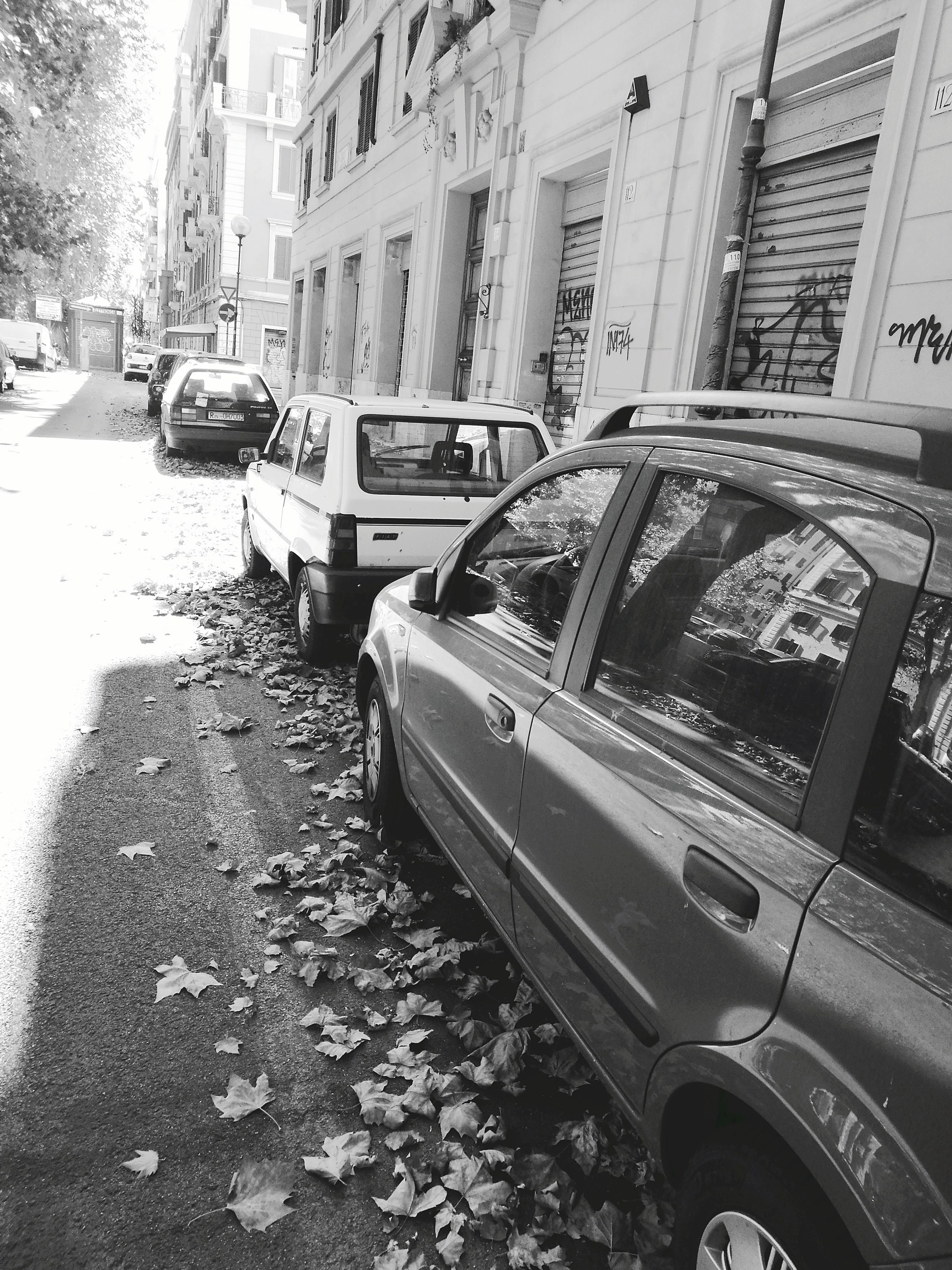 car, building exterior, built structure, land vehicle, architecture, transportation, mode of transport, day, street, leaf, outdoors, change, stationary, autumn, no people, nature, city