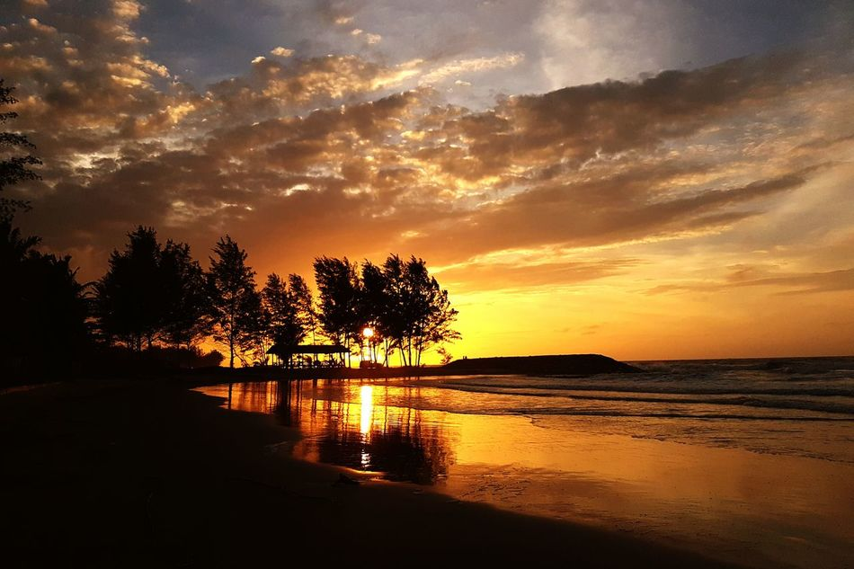 Sunset Water Nature Scenics Tree Sea No People Outdoors Sky Beauty In Nature Extreme Weather Horizon Over Water Landscape Beauty In Nature Beach Sand Nature Sunlight