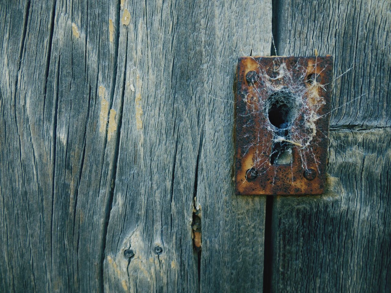 Wood - Material Door Safety Textured  Security Close-up Protection Outdoors Rusty Weathered No People Day Latch