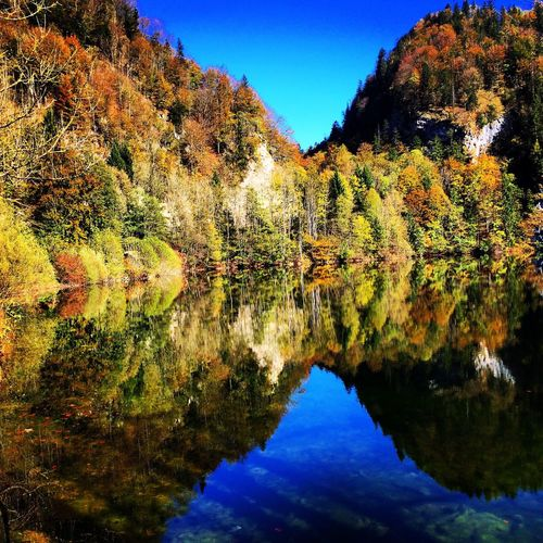Water Reflections Autumn Colors Nature_collection