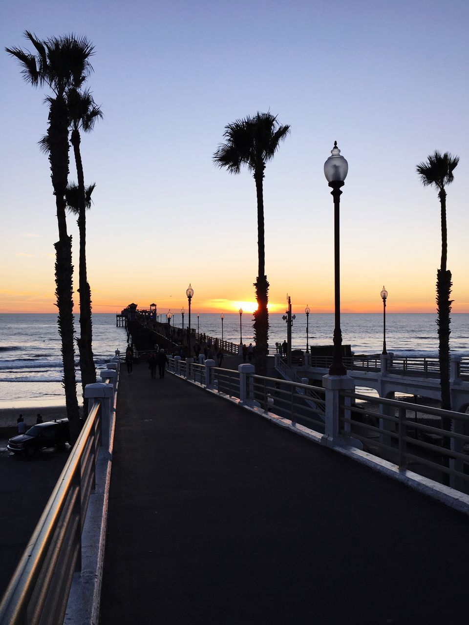 sunset, sea, silhouette, palm tree, water, sky, tree, scenics, nature, tranquility, tranquil scene, outdoors, beauty in nature, street light, clear sky, beach, horizon over water, no people, day