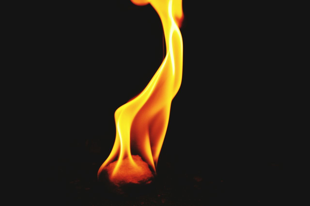Beautiful stock photos of fire, Black Background, Burning, Close-Up, Copy Space