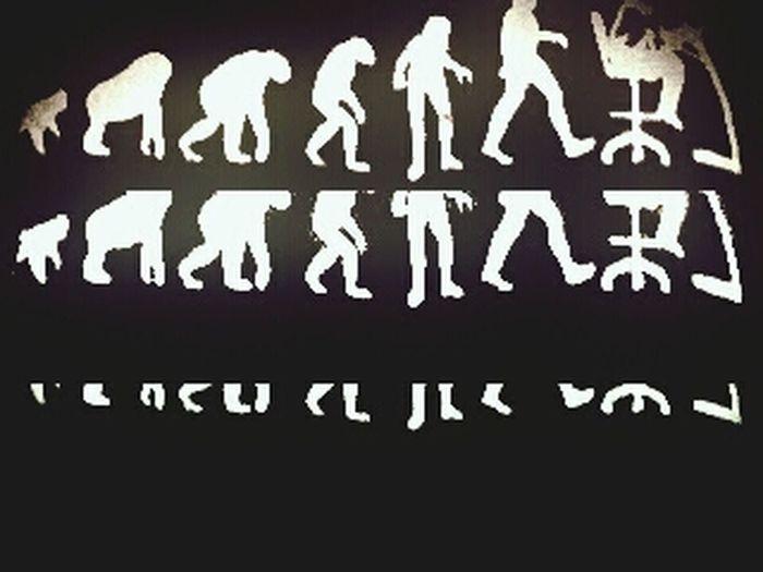 Evolution  Myblouse