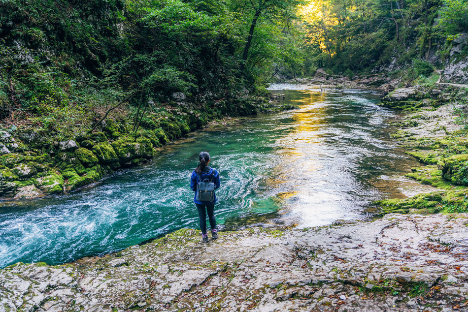 Adult Adults Only Adventure Beauty In Nature Day Forest Full Length Hiking Leisure Activity Nature One Person Outdoor Pursuit Outdoors People River Stream - Flowing Water Tranquility Tree Vacations Water