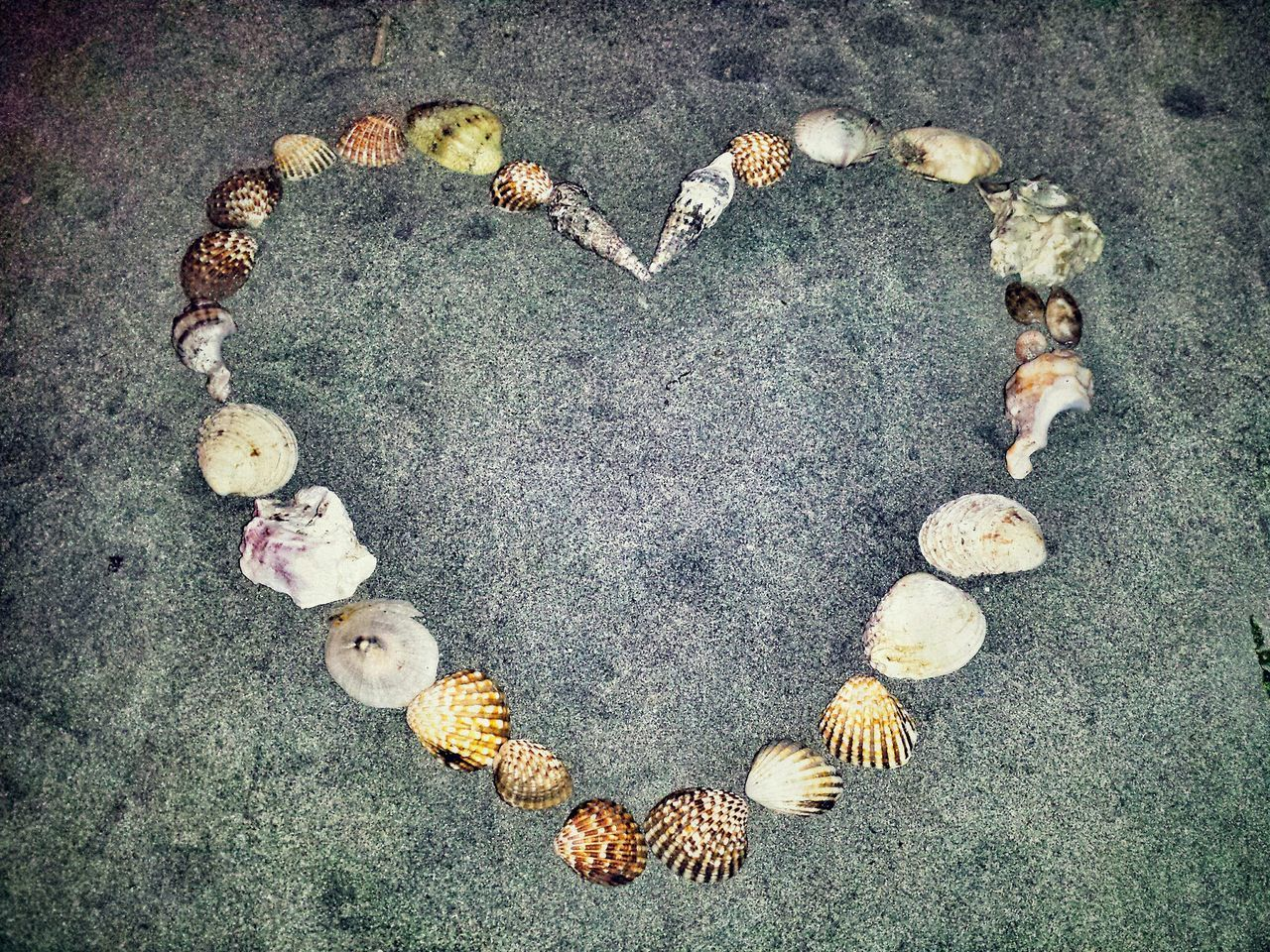 High Angle View Of Heart Shape Made Of Various Shells On Sand