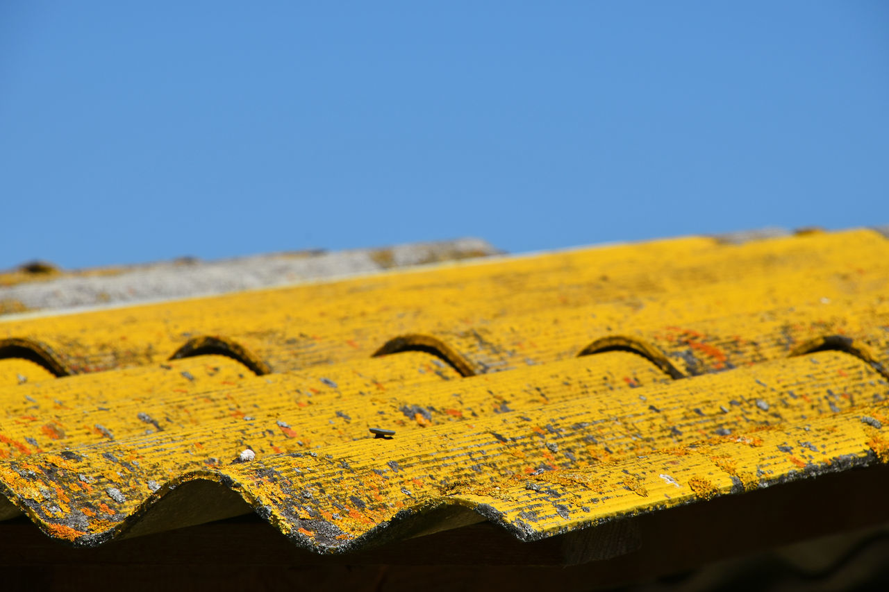 old yellow painted slate roof with lichen and moss stains Architectural Detail Architecture Background Blue Sky Close-up Detail Dirty Grunge Lichen Low Angle View Moss Old Paint Painted Roof Roof Tile Rooftop Selective Focus Sky Slate Slateroof Stained Vivid Yellow