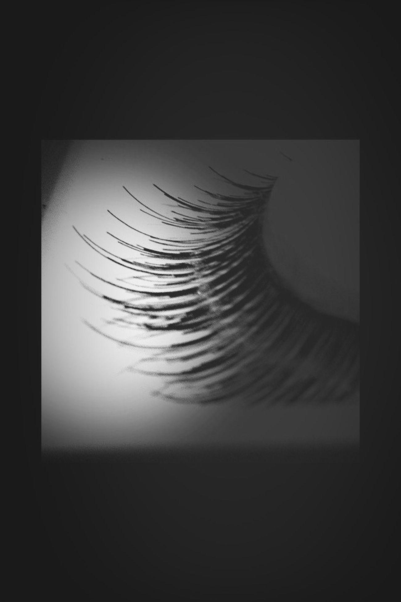 Blackandwhite Good Night Eye4photography  Bw_collection