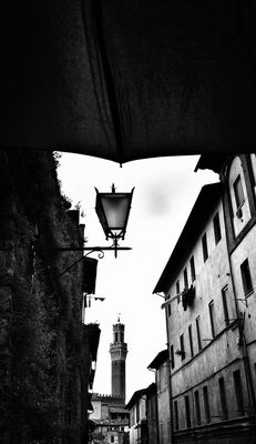 bw_collection in Siena by Al Ramsur