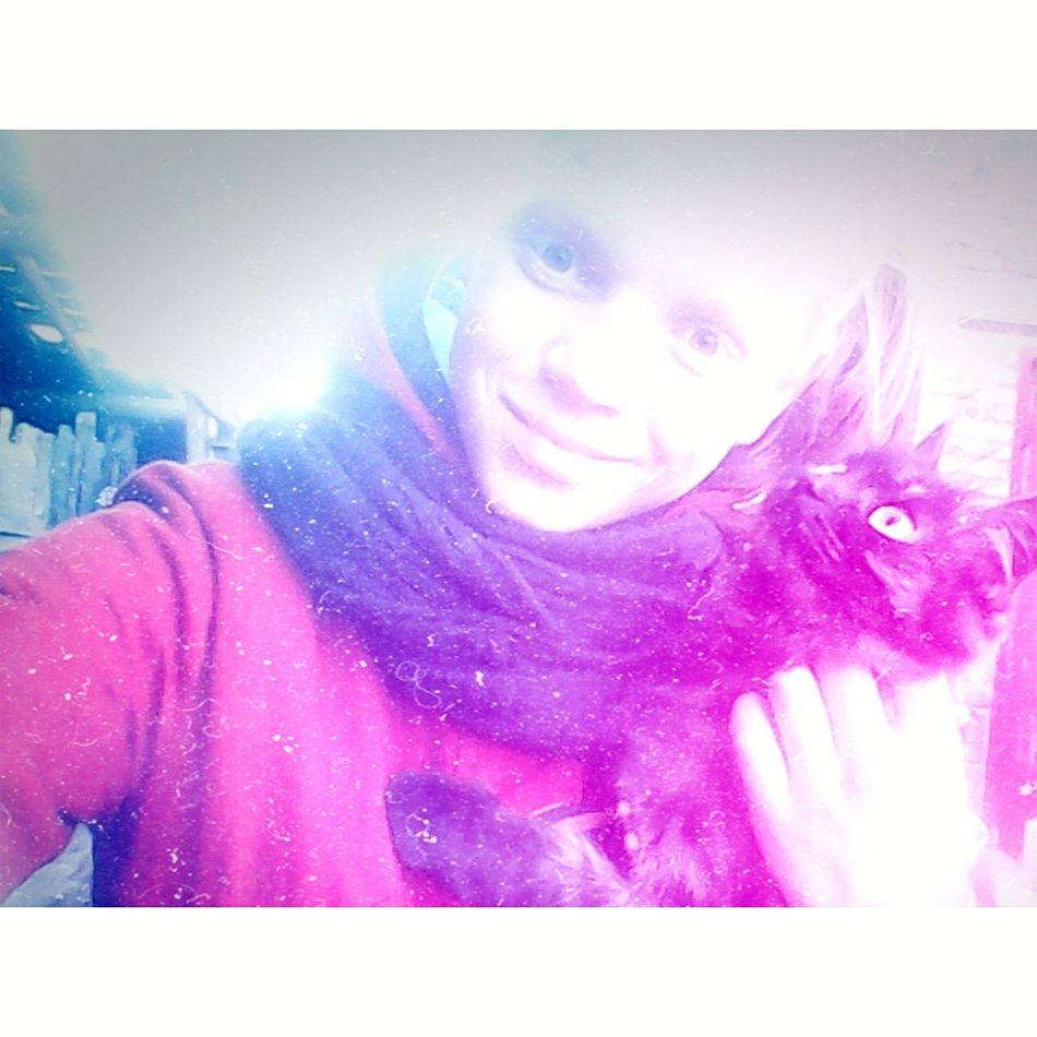 Hi! .......... I Love My Cat😻 Cute♡ Cat♡ 😘❤ FUNNY ANIMALS Cute😊 Eyes👀 😻