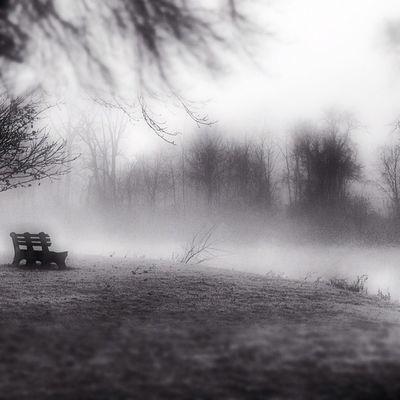 Fog with blur