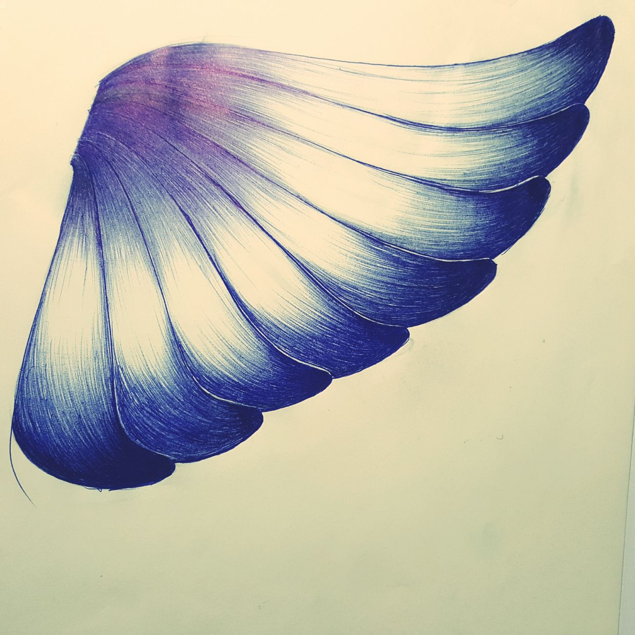 Elysian Wings Liftup Fly Drawing Pencil Drawing Sky Livelovedream Positive Vibes Life