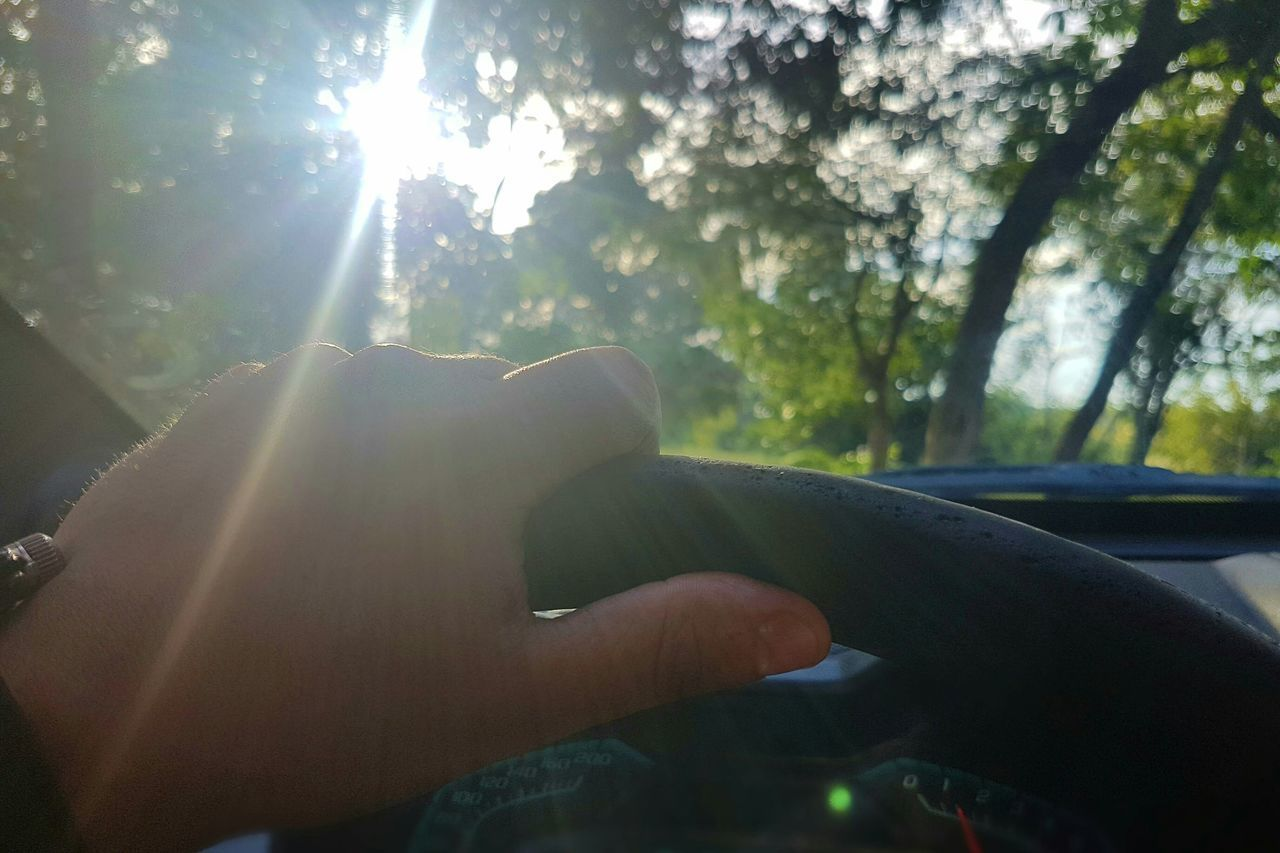 Hands Hand Sunbeam Point Of View Sunlight Lens Flare Nature Sun Human Hand Tree Steering Wheel Driving Premium Collection Getty Images Bestsellers BYOPaper! Live For The Story EyeEmNewHere The Great Outdoors - 2017 EyeEm Awards