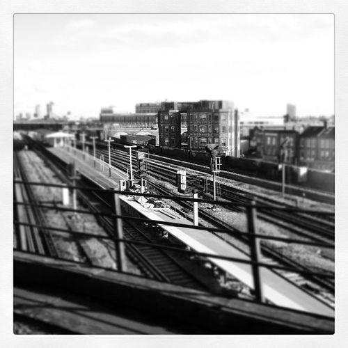 Viewsfromatrain Train Rail Station track