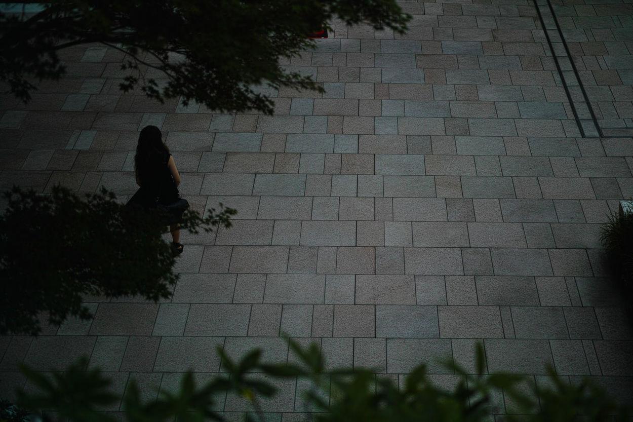 A Bird's Eye View Brick Wall Dark Day DP3 Focus On Shadow Foveon Leisure Activity Lifestyles Merrill Outdoors Sigma