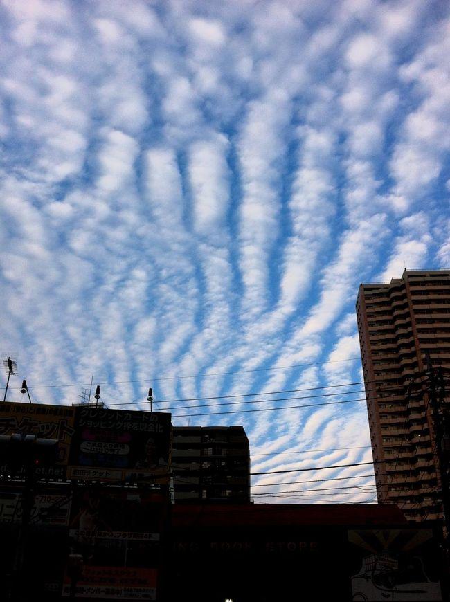 Sky いわし雲