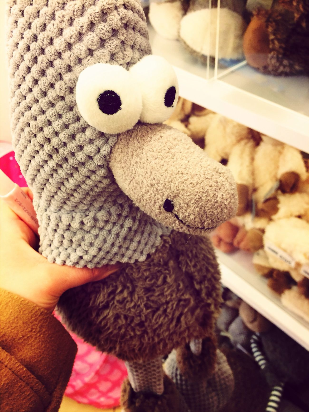 @ Cute♡ @ Bard @ ?