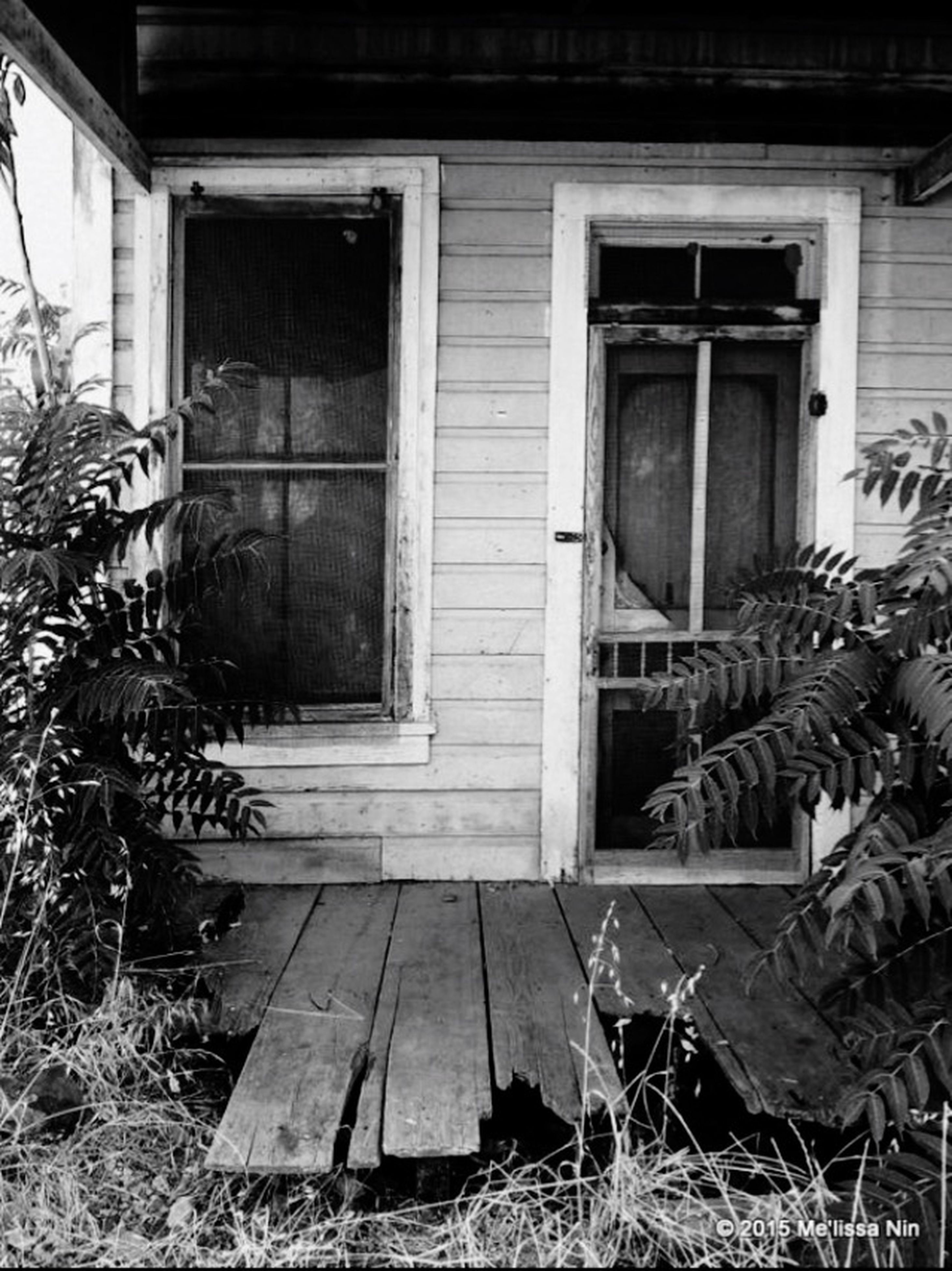 building exterior, architecture, built structure, house, abandoned, window, obsolete, damaged, run-down, residential structure, plant, deterioration, old, bad condition, residential building, grass, weathered, day, no people, door