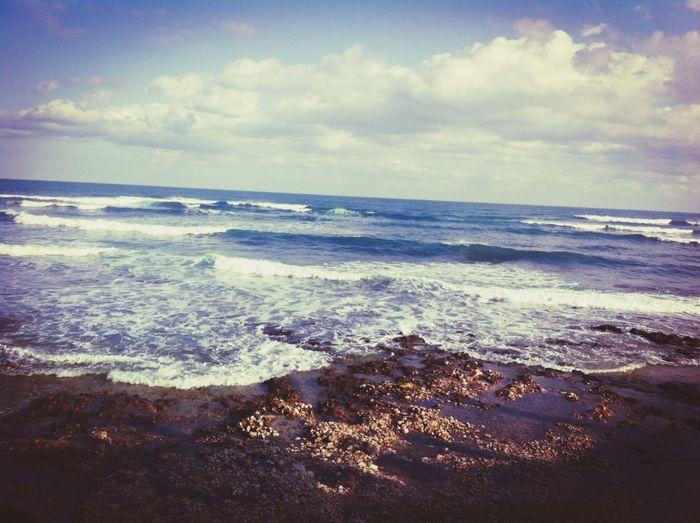 Taking Photos Beach Landscape Enjoying The Sun