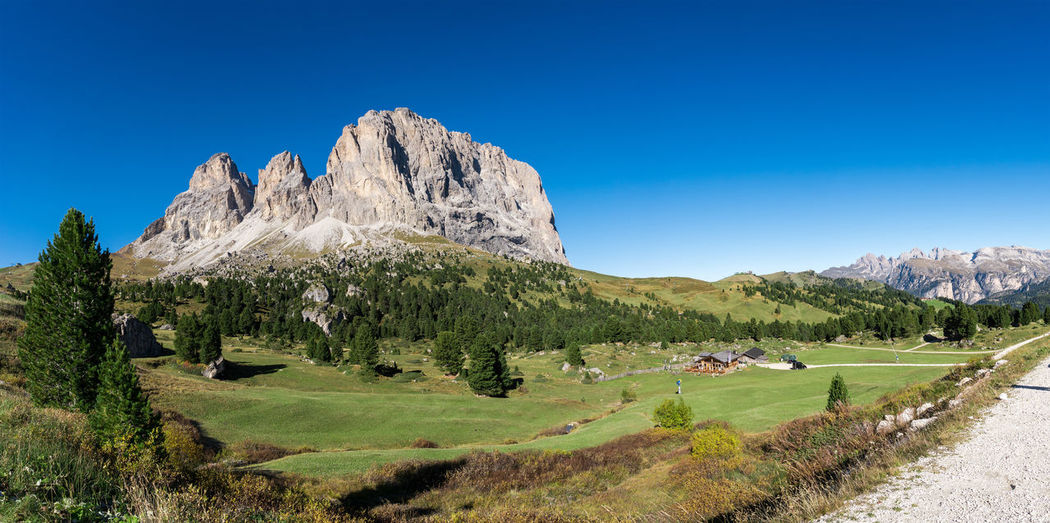 Langkofel Dolomites Panoramic view in south tirol Italy. Dolomites, Italy Langkofel Plattkofel Schlern Beauty In Nature Blue Clear Sky Day Grass Green Color Landscape Mountain Mountain Range Nature No People Outdoors Rocky Mountains Scenics Sellatowers Sky Tranquil Scene Tranquility Tree