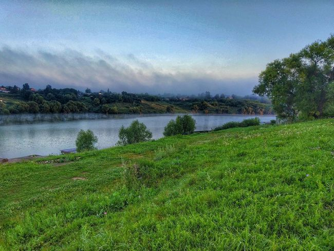 """River """"pronya"""". Morning, fog. Nature Beauty In Nature No People Freshness Water Green Color Lake Grass Outdoors Growth Scenics Sky Day Tree Landscape"""